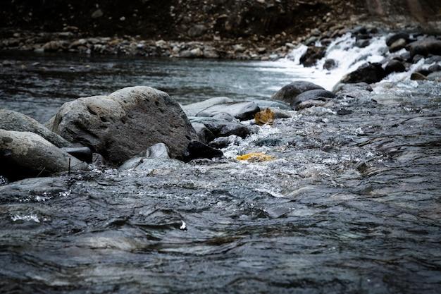 Closeup rochas na paisagem de água Foto gratuita