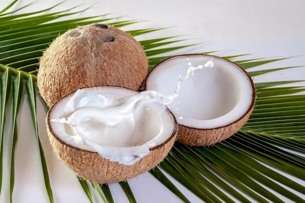 Coco com leite no fundo da folha de coco Foto Premium