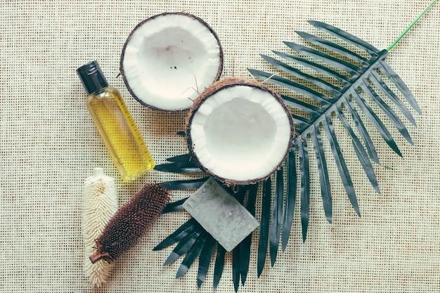 Coco e folha de palmeira Foto gratuita