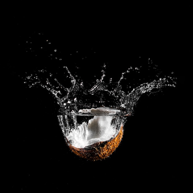 Coco mergulhando na água Foto gratuita