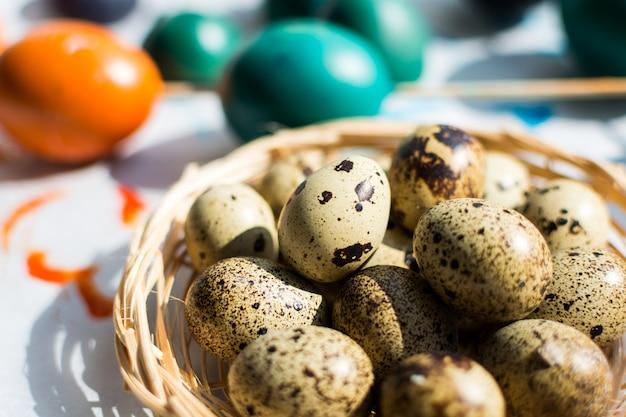 Codorna de páscoa e ovos coloridos regulares Foto gratuita