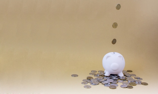 Cofrinho com dinheiro e moedas Foto Premium