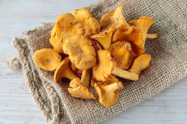 Cogumelos cantharellus Foto Premium