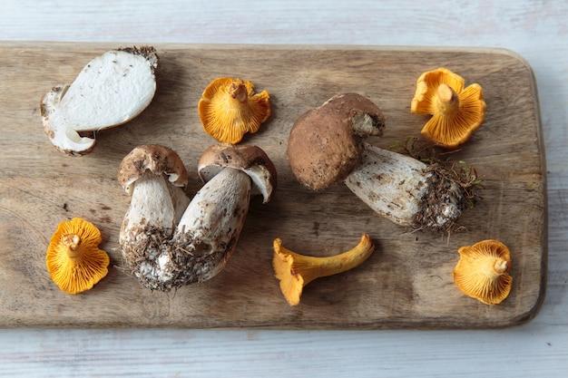 Cogumelos comestíveis Foto Premium