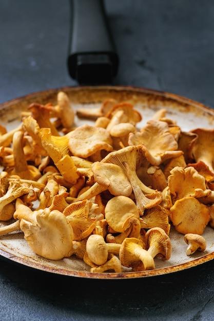 Cogumelos da floresta chanterelle Foto Premium