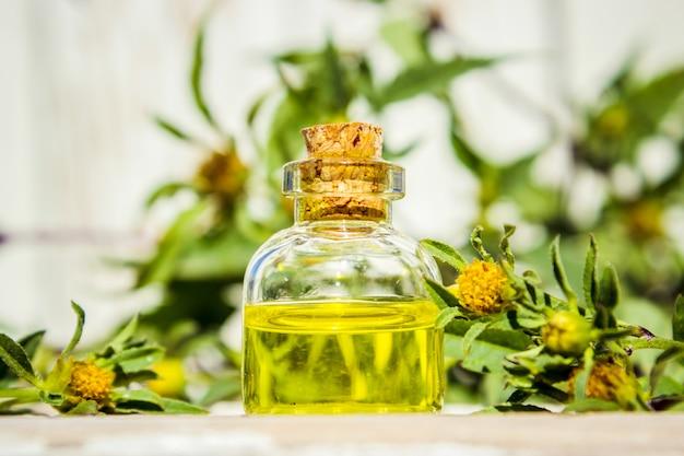 Colagem de ervas e óleo essencial. natureza. Foto Premium