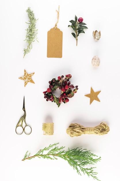 Coleção de bagas, galhos, fios, tesoura e tag Foto gratuita