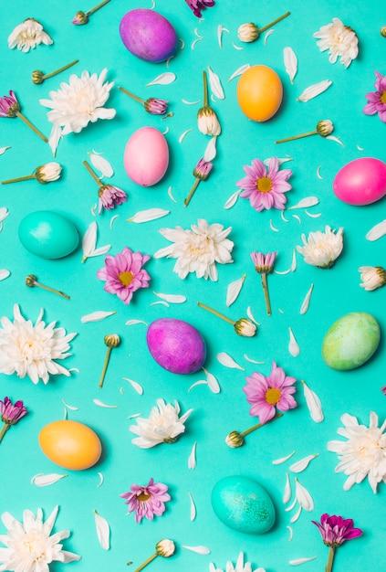 Coleção de ovos brilhantes entre botões de flores Foto gratuita