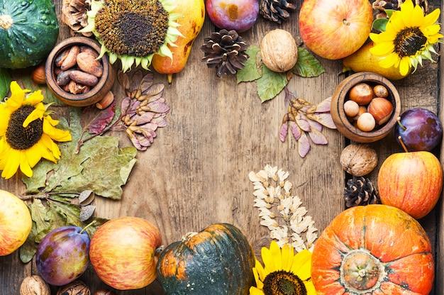 Colheita de outono ainda vida quadro fundo vista superior Foto Premium