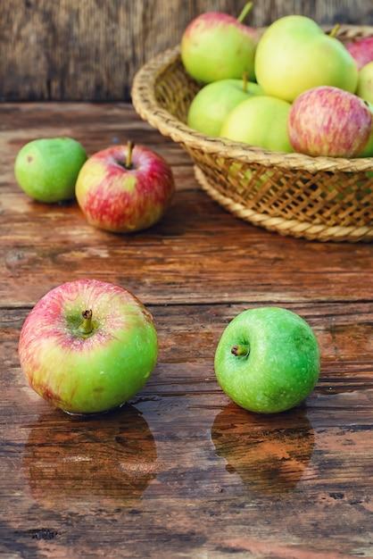 Colheita de outono de maçãs Foto Premium