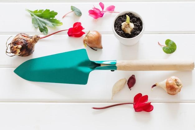 Colher de jardinagem com planta de flores no espaço de madeira Foto Premium