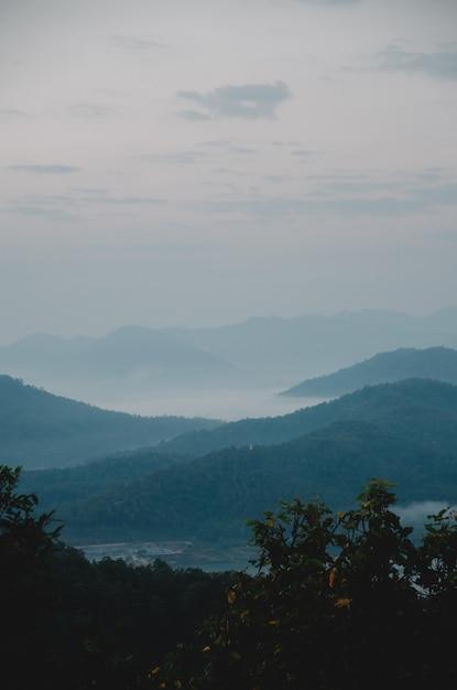Colina verde escura e nevoeiro com primeiro plano de árvore Foto Premium