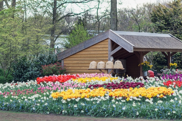 Colmeias em um jardim com flores em primeiro plano Foto Premium