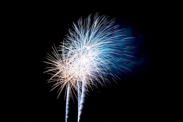 Colorido, fogos artifício, noturna, céu Foto gratuita