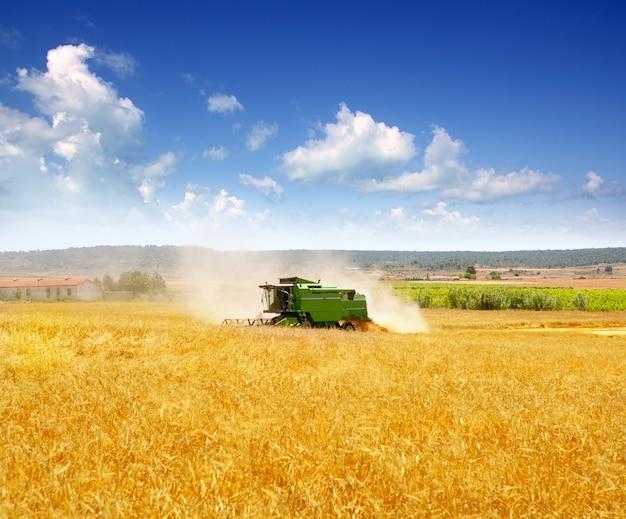 Combine harvester harvesting wheat cereal Foto Premium