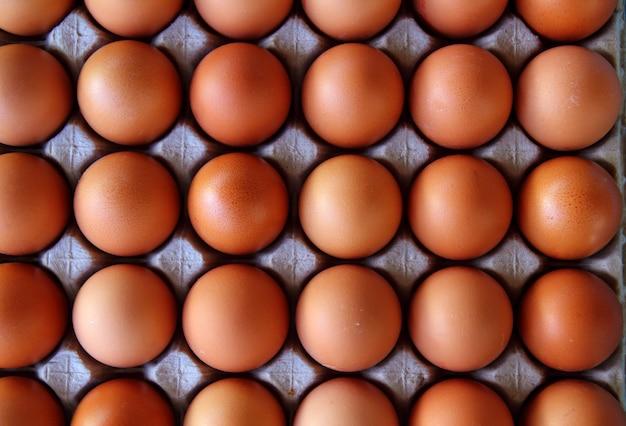Comida de caixa de padrão de filas de ovos Foto Premium
