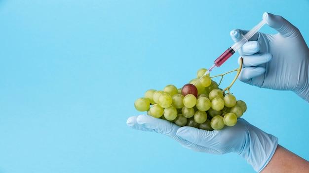 Comida deliciosa de uvas gmo modificada Foto gratuita