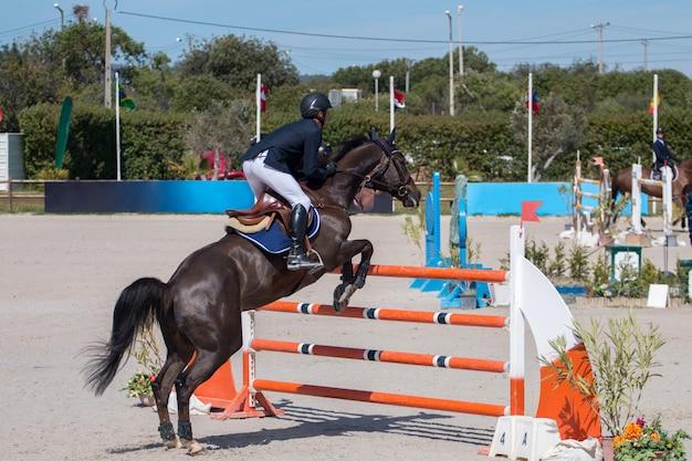 Competição de salto de cavalo Foto Premium