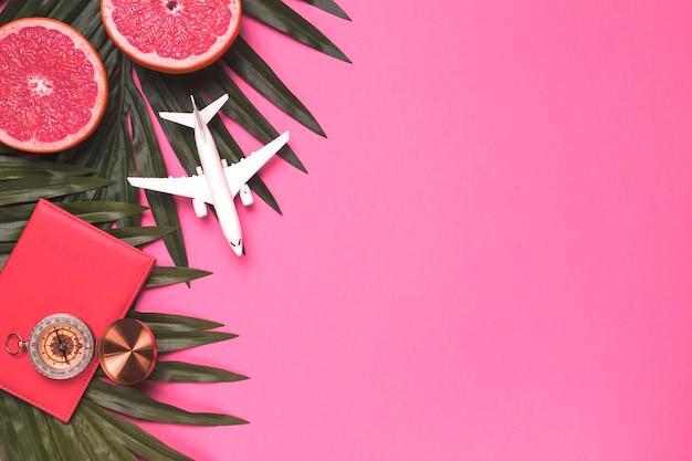 Composição da licença de planta de compasso de passaporte de avião pequena Foto gratuita