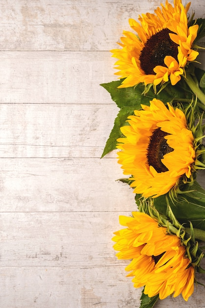 Composição de flores de girassóis amarelos em uma madeira branca Foto Premium