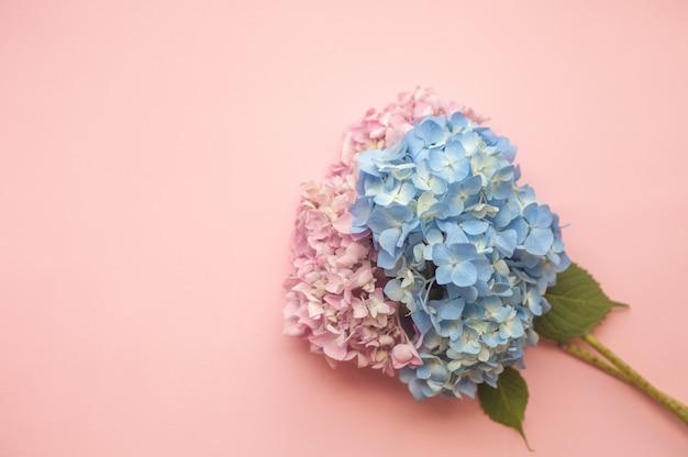 Composição de flores rosa e azul de hortênsia Foto Premium
