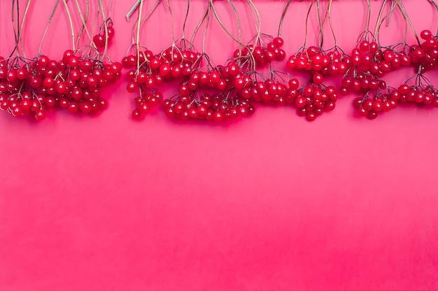 Composição de outono. moldura feita de bagas vermelhas viburno em fundo rosa Foto Premium