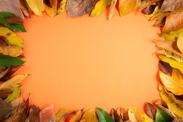 Composição de outono. quadro de folhas amarelas caídas em fundo laranja Foto Premium
