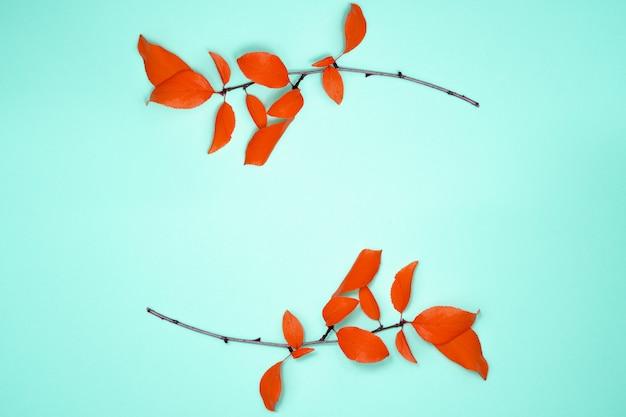Composição de outono, quadro de folhas. dois ramos com folhas vermelhas, ameixa, sobre fundo azul claro. vista plana, vista superior, cópia espaço Foto Premium
