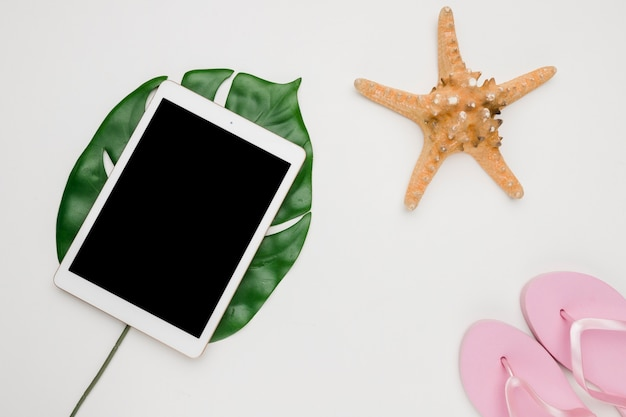 Composição de sandálias de tablet starfish e folha de planta Foto gratuita