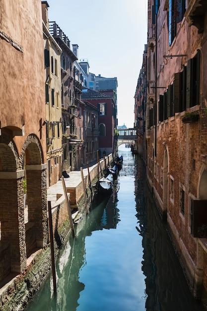 Composição elegante de veneza Foto gratuita