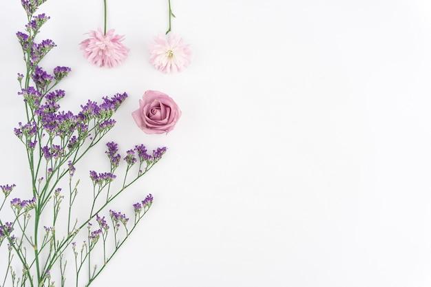 Composição floral no fundo branco Foto gratuita