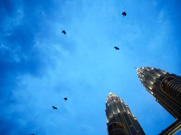 Conceito da opinião do céu da torre gêmea do corvo Foto gratuita