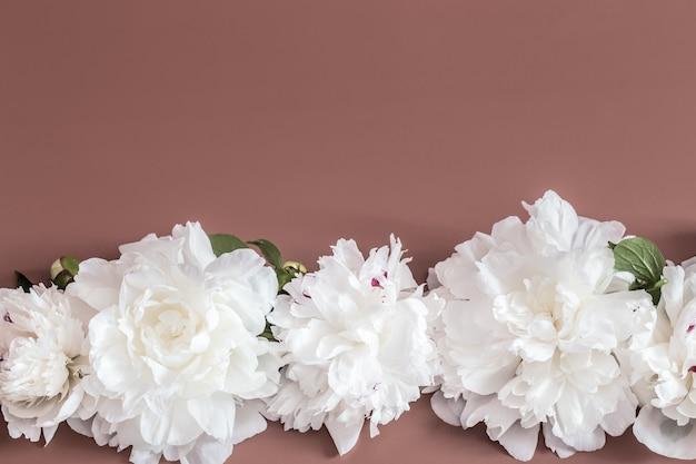 Conceito de design - vista superior do ramo de lindas flores na parede colorida com espaço de cópia Foto gratuita