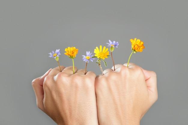 Conceito, de, planta, crescendo, de, mulher, mãos Foto Premium