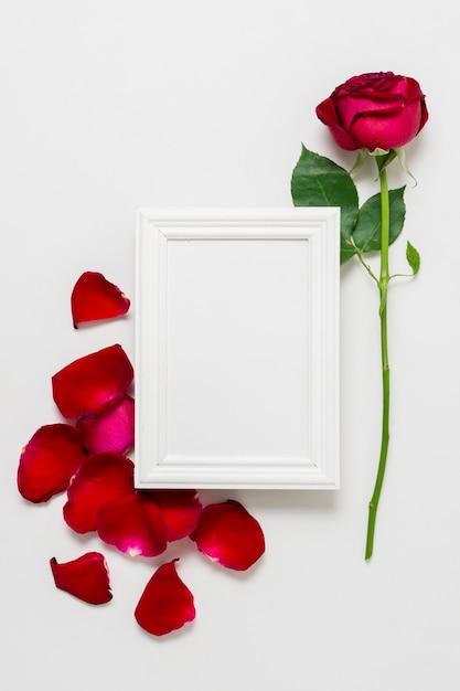 Conceito de rosa vermelha com moldura branca Foto gratuita