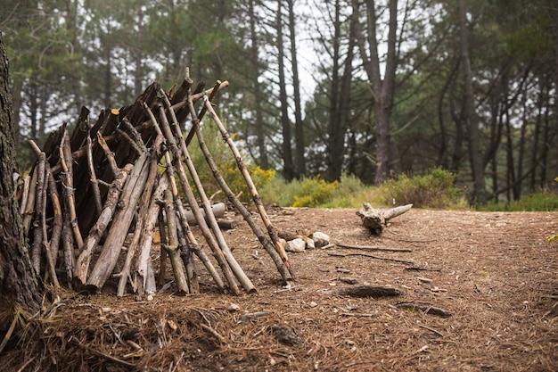 Conceito de vida campista com abrigo de ramos Foto gratuita