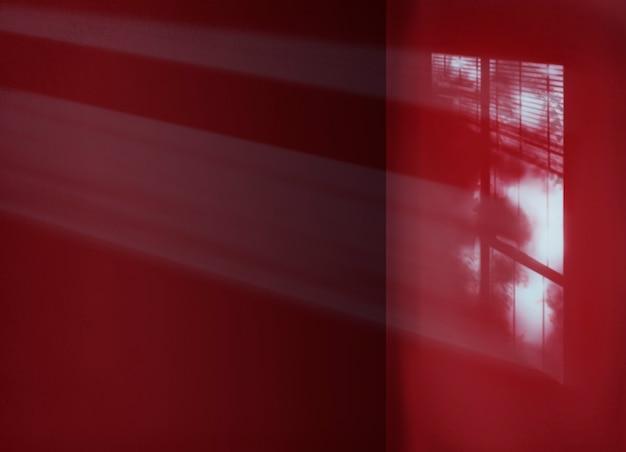 Conceito interior da sombra da sala do espaço da cópia do cimento do fundo Foto gratuita