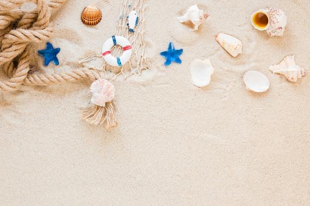 Conchas do mar com corda náutica na areia Foto gratuita