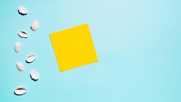 Conchas e adesivo em branco na superfície da luz Foto gratuita