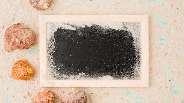 Conchas entre areia perto de quadro-negro Foto gratuita