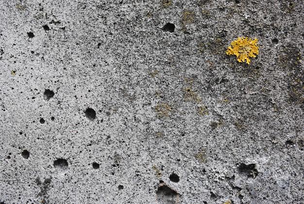 Concreto de textura. concreto velho. betão molhado, musgo-crescido Foto Premium