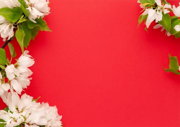 Configuração cor-de-rosa vermelha do plano do fundo cor-de-rosa vermelho do ramo da flor da árvore de apple. branco botões florais vista superior modelo longa web banner. copie o espaço maquete design de pano de fundo. conceito de convite de flores frescas de quadro floral primavera Foto Premium