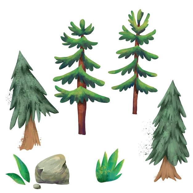 Conjunto aquarela de pinheiros Foto Premium
