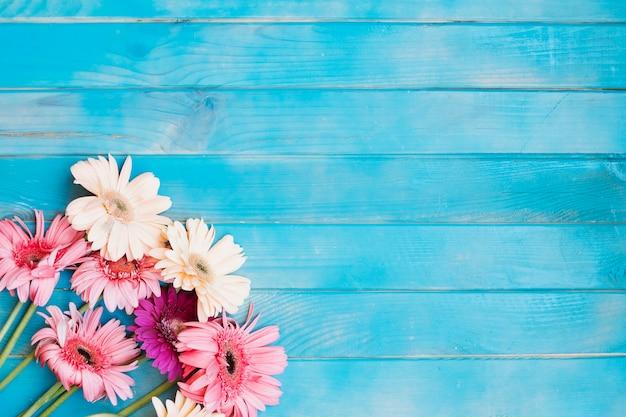 Conjunto cor-de-rosa na mesa azul Foto gratuita