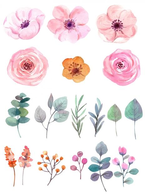 Conjunto de flores em aquarela em branco Foto Premium