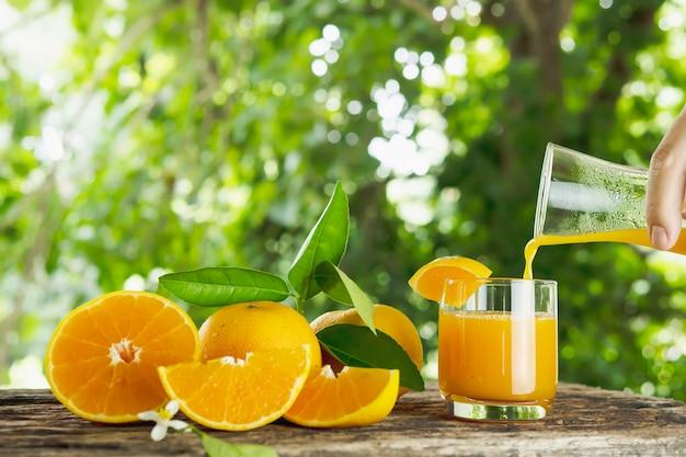Conjunto de fruta laranja suculenta fresca sobre a natureza verde Foto gratuita