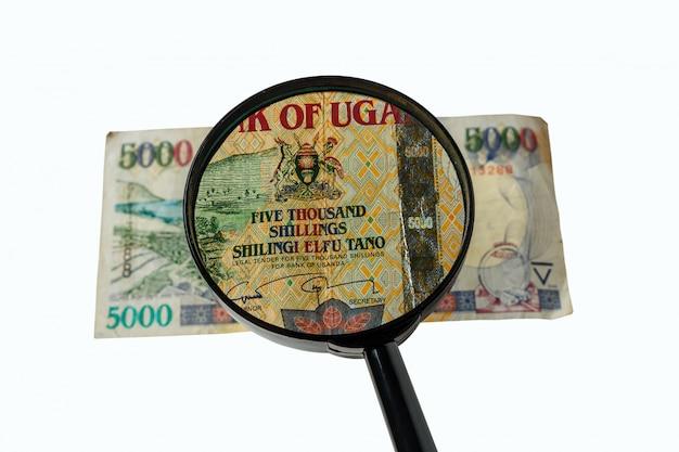 Conta de xelins de uganda e lupa Foto Premium