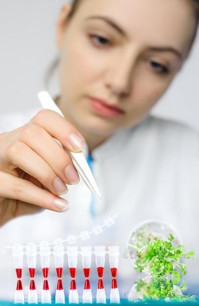 Controle por pcr da contaminação bacteriana em agrião-salat Foto Premium