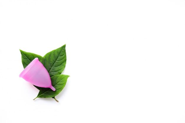 Copa menstrual reutilizável e folhas verdes isoladas no branco Foto Premium