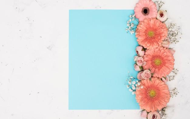 Cópia espaço primavera gerbera flores vista superior Foto gratuita